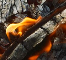 Flames in Ash Texture / Wood and Fire Sticker
