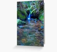 Megalong Valley, Blackheath NSW Australia Greeting Card