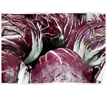 Red Radicchio Heads Poster