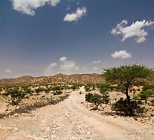 Somali Highway by morealtitude