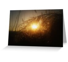 live gold 2 Greeting Card