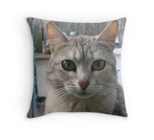 The cat who is looking out of the window Throw Pillow