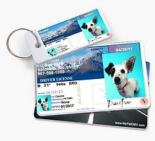 1.	Neatly designed personalized pet ids are not the fab of the pet kingdom. by mypetdmv