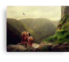 The Journey... Canvas Print