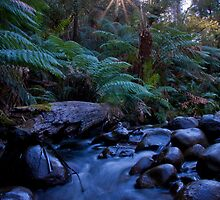 Badger Creek 1 by Daniel Berends