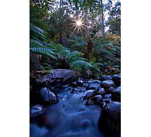 Badger Creek 1 Photographic Print