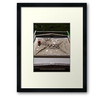 WINTER - LORD STAG AS RUDOLPH - 6 TAKING TIME OUT Framed Print