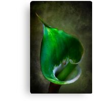 Green Goddess 2 Canvas Print