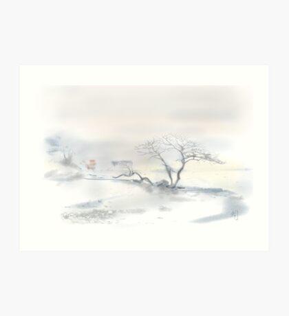 """Scots Pine"", Fårösund, Gotland, Art Print"