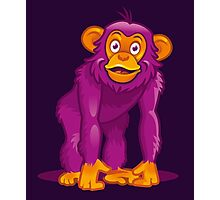 Curious Monkey Photographic Print