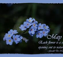 May's Fabulous Forget-Me-Not by Vickie Emms