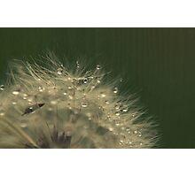 Pitter Patter Rain drops Photographic Print
