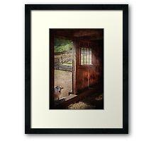 Animal - Lamb - Hello, anybody home Framed Print