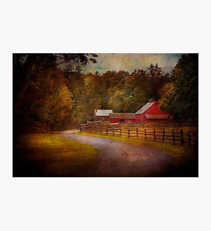 Farm - Barn - Rural Journeys  Photographic Print