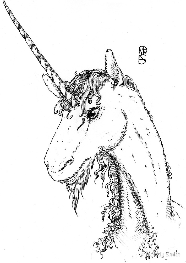 The Illustrated Unicorn by Melody Smith