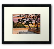 Pinic Point Framed Print