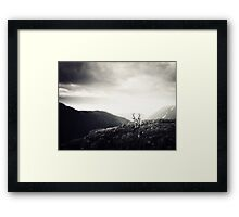 The Undiscovered Framed Print