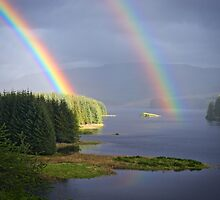 Rain and Sun by Tim Haynes