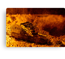 Blast On The Desert Canvas Print