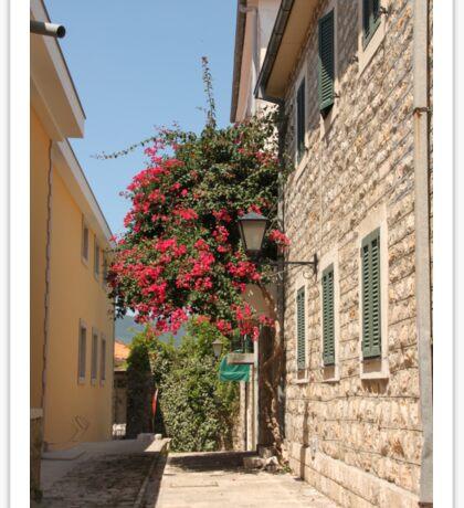 The streets of Herceg Novi Sticker