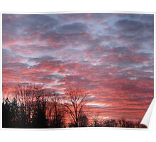 Pink Clouds at Sunrise with Trees 12-10 Poster