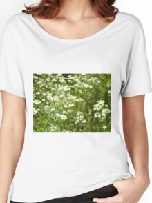 Herbs on the lawn - small white camomile flowers Women's Relaxed Fit T-Shirt
