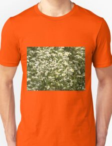 Herbs on the lawn - camomile flowers Unisex T-Shirt