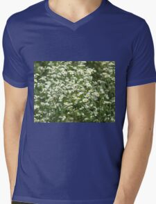Herbs on the lawn - camomile flowers Mens V-Neck T-Shirt