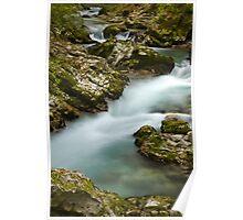 The Soteska Vintgar gorge Poster