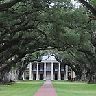 Bayou Elegance - Oak Alley Plantation by BrandyNicole