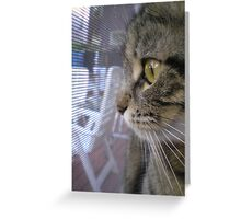 miss Max Greeting Card