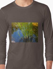Water reeds growing out of the water Long Sleeve T-Shirt