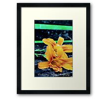 Something lovely is in the air. Framed Print