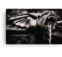 wings.. Canvas Print