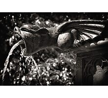 fountain.. Photographic Print