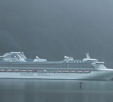 Sapphire Princess.... by DonnaMoore