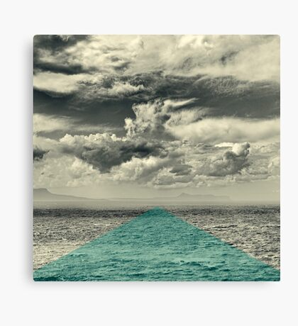 Field of Vision Canvas Print