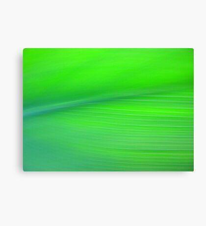 Pretty Green Canvas Print