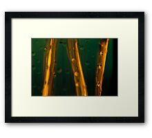 Ode to glass (11) Framed Print