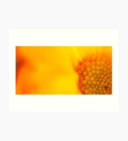 Sunshine Haiku  Art Print