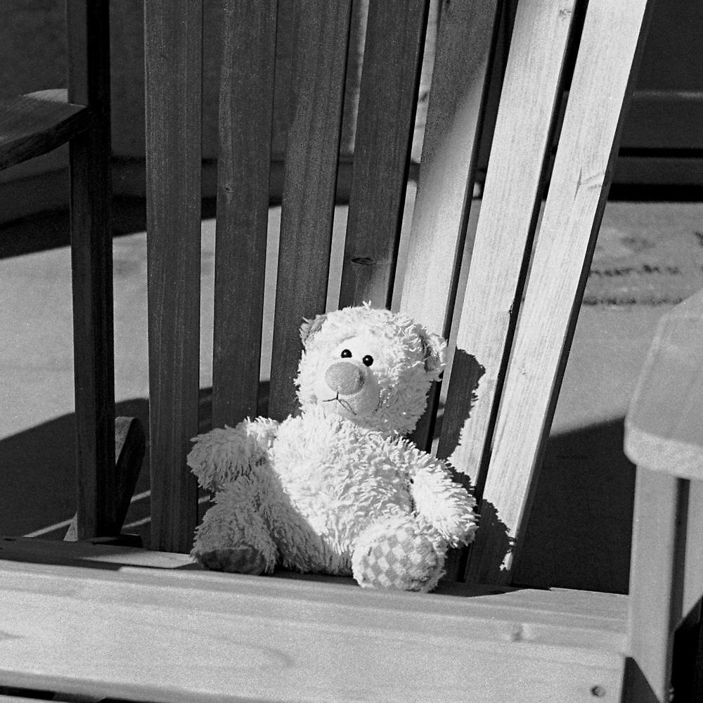 Sad Bear by James2001
