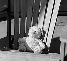 Sad Bear by James2001