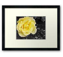 SC Yellow Framed Print
