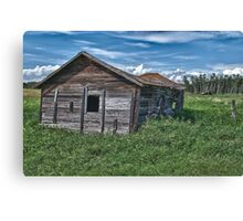 Alberta Cow Shed Canvas Print
