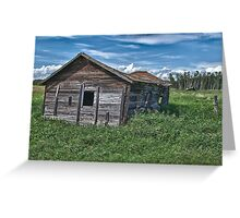 Alberta Cow Shed Greeting Card
