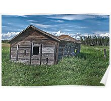 Alberta Cow Shed Poster