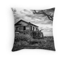 Abandoned Farmhouse, Ohio Route 582 Throw Pillow