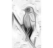 The bird 2 Photographic Print