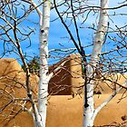 Adobe Through the Aspens by Kim North