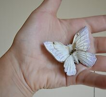 Butterfly by mjaleman